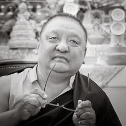 Shamarpa Mipham Chokyi Lodro